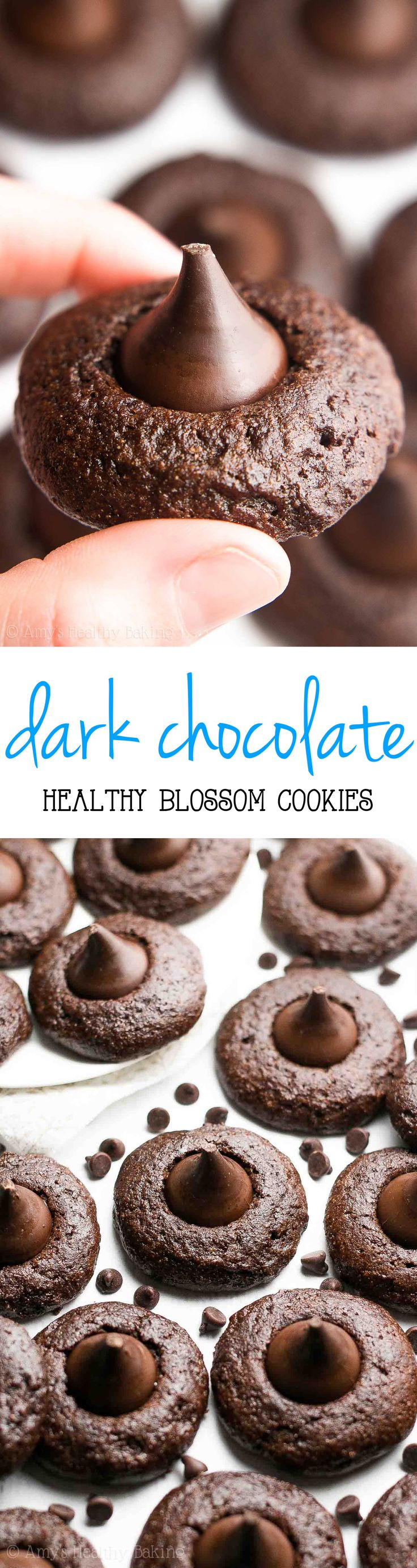 {HEALTHY!} Dark Chocolate Blossoms -- SO good & only 61 calories! They taste like brownies!