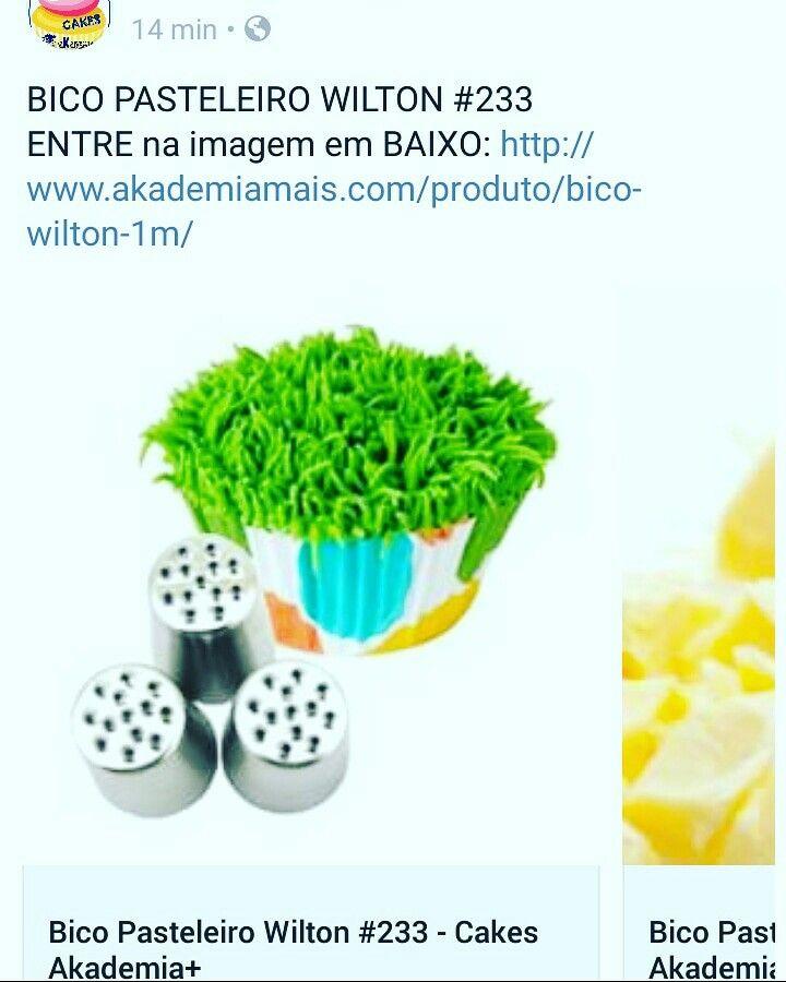 BICO PASTELEIRO WILTON #233 ENTRE na imagem em BAIXO: http://www.akademiamais.com/produto/bico-wilton-1m/