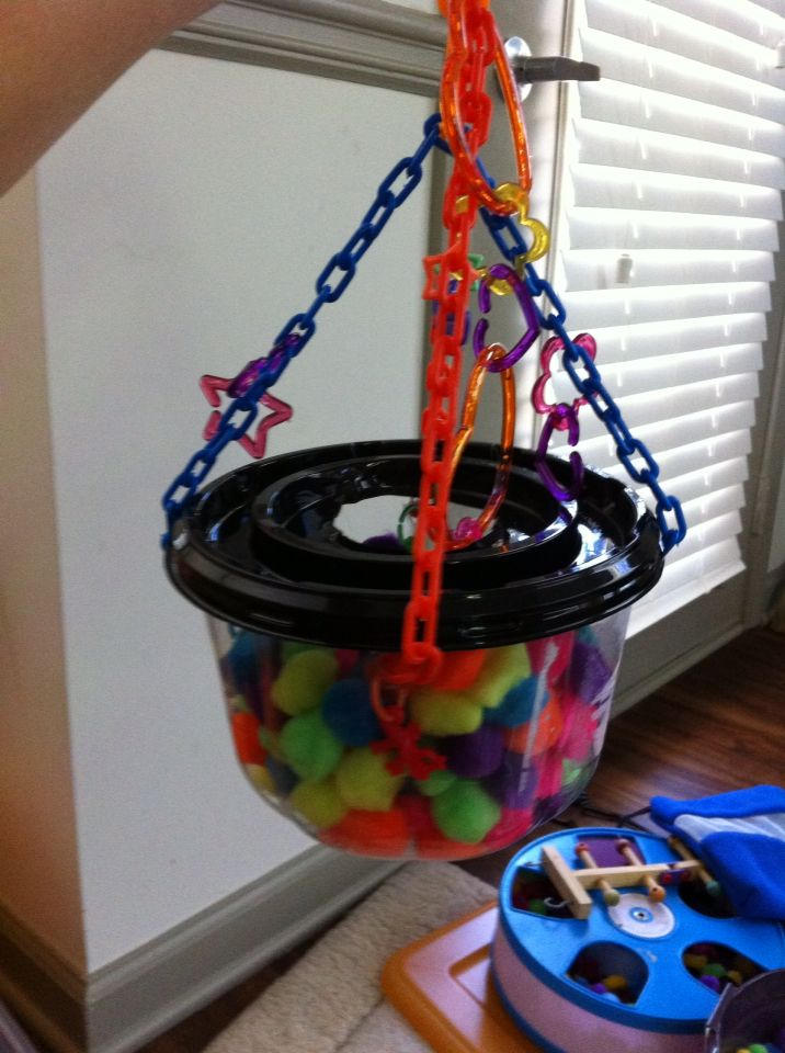My first home made hanging ball pit for my sugar gliders!