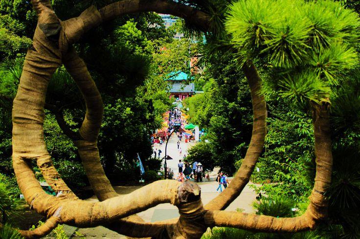 https://flic.kr/p/KXAd26 | Parco di Ueno - Ueno Park | Kiyomizu Kannondō - Ueno…