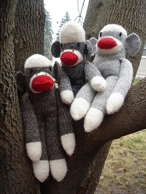 Basic Sock Monkey Knitting Pattern Spider Monkeys Pinterest