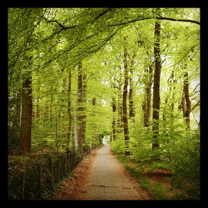 Cant wait to go back here. wageningen, netherlands