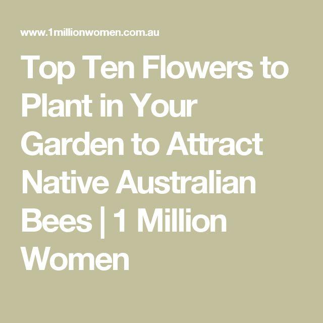 Top Ten Flowers to Plant in Your Garden to Attract Native Australian Bees | 1 Million Women