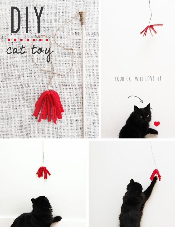 Best 25 homemade cat toys ideas on pinterest diy cat for Diy cat wand