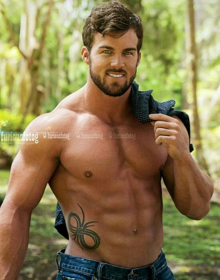 Bear erotic best dating in Brisbane
