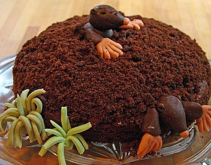 De Maulwurfkuchen is een overheerlijke taart die je vrij gemakkelijk zelf maakt…