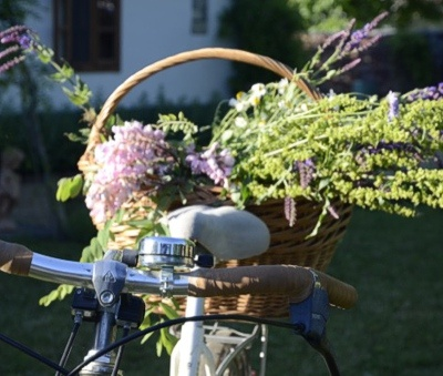 Káli Cottages at Lake Balaton - we have bikes too, they are great help to pick up breakfast rolls