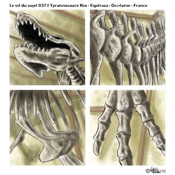 """Nouveau """"vif du sujet"""" face à un magnifique squelette de #TRex au musée des #dinosaures de #Esperanza en #Occitanie. #infinitepainter #illustration  #dessin #SamsungNote5"""