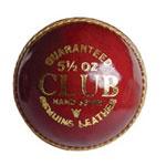 Club Cricket Ball   $10.00