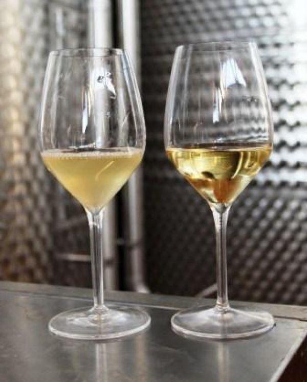 Il vino non è qualcosa di schematico, non è solo un'etichetta, un nome, un bouquet di sapori; il vino si degusta con i sensi, non è un fatto intellettuale. Un viaggio in Alsazia, in un'azienda biodinamica che ama innovare, sperimentare e stupire