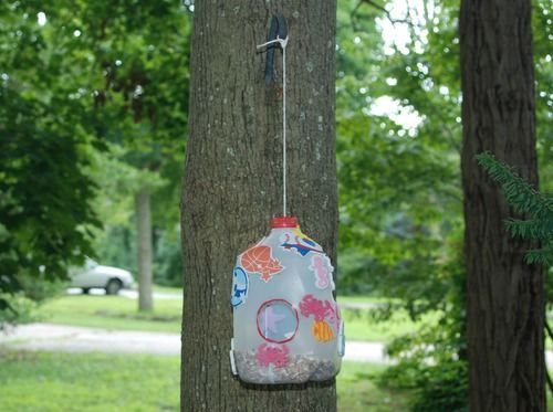 Beat the Heat Challenge Day 8: Make a Recycled Bird Feeder - CafeMom Mobile