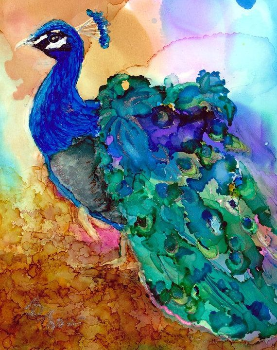 40 Ink Painting Ideas For Inspiration: 17 Best Ideas About Peacock Artwork On Pinterest