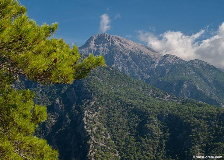 The summit of Zaranokefala
