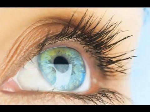 Human body shocking facts    Brain Function    Video embedded - Stuffed Magazine