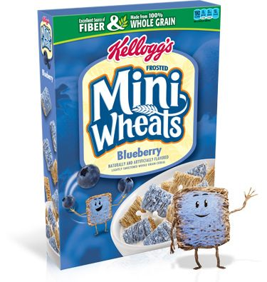Blueberry Cereal High in Iron, Protein, Fiber, low cal