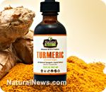 Exclusive immune boosting liquid Turmeric extract now available at the Natural News Store