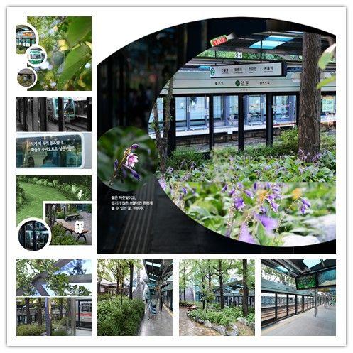 【首尔地铁图中文版】地铁站里的绿地—2号线新踏站 新踏站位于首尔城东区,在2号线圣水支线上,是一个地面站,日客流在3000人上下。由于空间比较大,并且客流较少,2003年改造时配合站外街心花园和首尔地铁公司新踏分部的整体环境,在单边站台上设置了一小片绿地。独特的设计和清新的绿色,让每一位过往的游客心情舒畅,亲来首尔一定要体验一下哦。http://www.hanguoyou.org/public/traffic/main/2