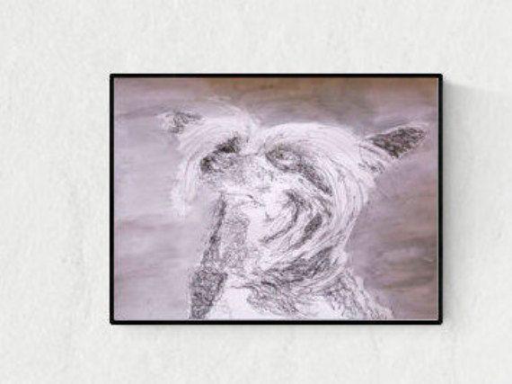 Hand gefertigte Illustration: Chinesischer Schopfhund