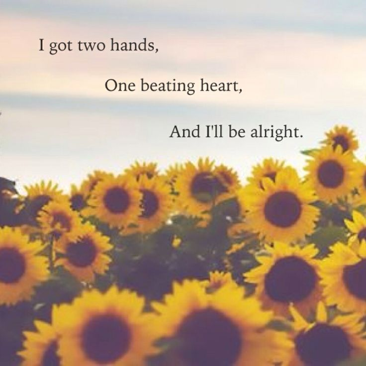 All the broken hearts in the world still beat...  Girls chase boys - Ingrid Michaelson