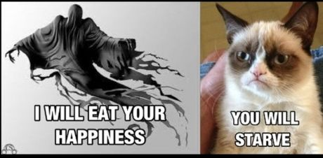 Dementor vs. Grumpy Cat