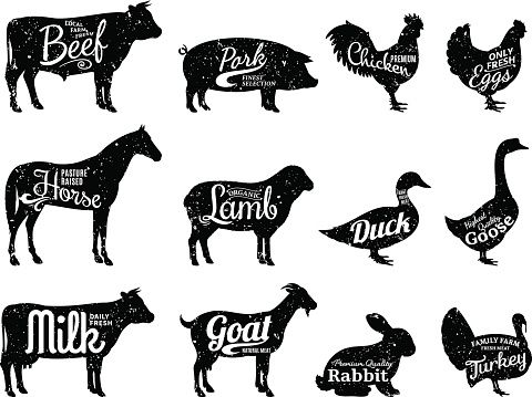 Set Of Butchery Labels Templates Farm Animals With Sample Text Retro Styled Farm Animals Silhouettes Collec Animal Silhouette Sheep Illustration Farm Animals