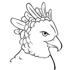 20 Cute Eagle Coloring Pages For Your Little Ones In 2020 Coloring Pages Eagle Drawing Harpy Eagle