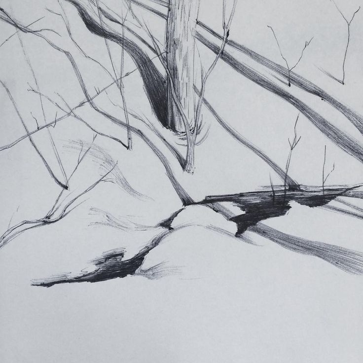 nature studies .  .  .  #drawing #sketchbook #sketch #naturestudies #snow #winter #branches #trees #forest #showyourwork