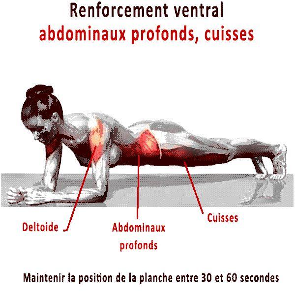 Gainage ventral sur les coudes pour les  muscles antagonistes du dos