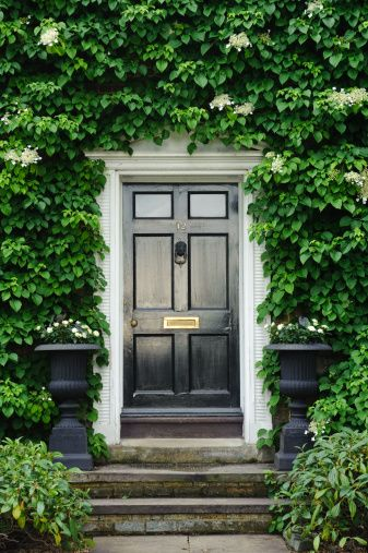 lush greenery surrounding black door flanked with black urns