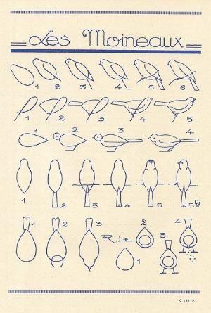 Learn to draw birds by bessie