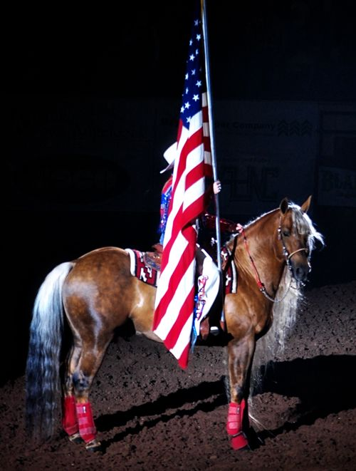 rodeo rider with flag | Six-time Wrangler National Finals Bareback Rider, Chris Harris