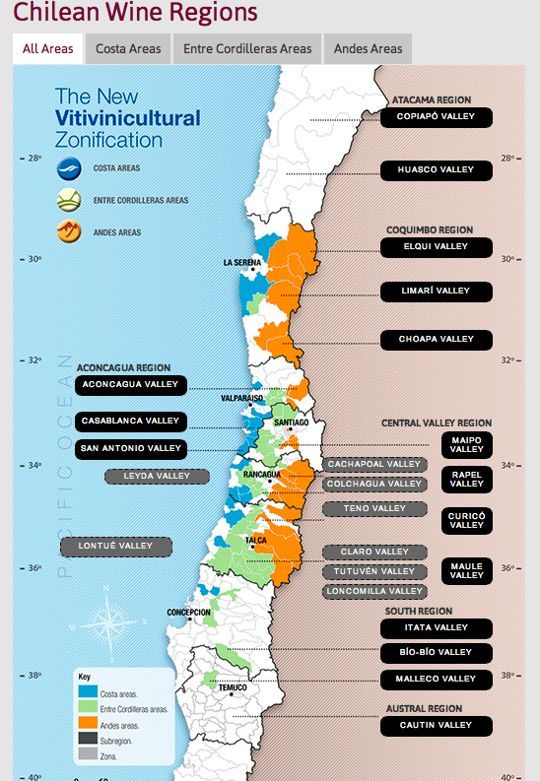 Chilean Wines 101: An Overview