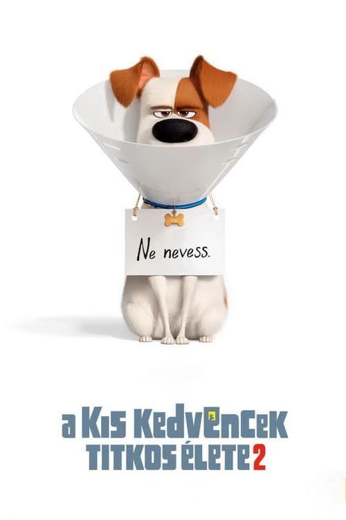 Filmek Videa A Kis Kedvencek Titkos Elete 2 2019 Teljes Film Magyarul Secret Life Of Pets Secret Life Full Movies Online Free