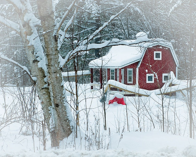 Cute red cabin! Looks like a fun place to spend Christmas in!