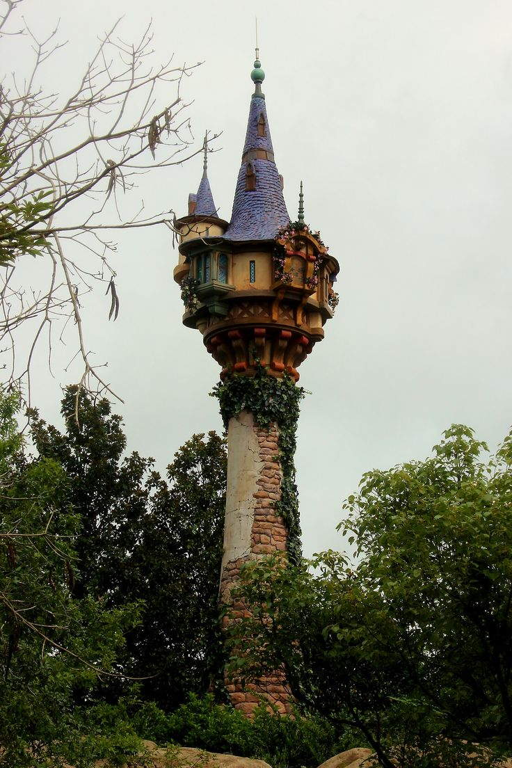 Do It Yourself Home Design: Rapunzel's Tower, With Braided Hair Tangled And Caught In