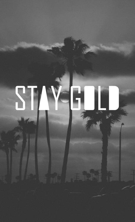 """'Stay Gold' - Comes from the Robert Frost poem, """"Nothing gold can stay."""" Often can refer to staying true to yourself and your own character / stay young and notice the world / Being true to yourself, innocent, uncorrupted, unblemished etc. / Stay true and pure, have integrity."""