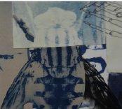 Zoom-Collage cianotipia