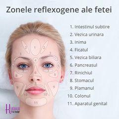 Zonele reflexogenee ale fetei