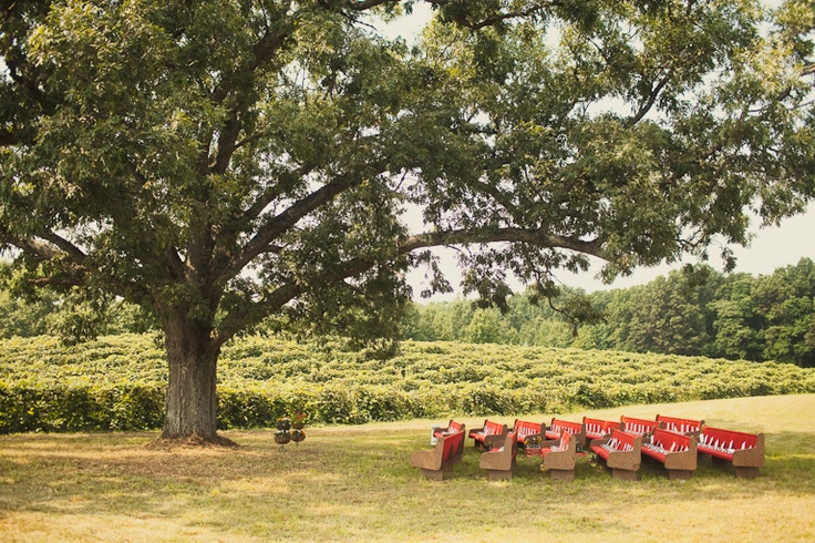 Church Pews as seats for an outdoor wedding!  Love it!!