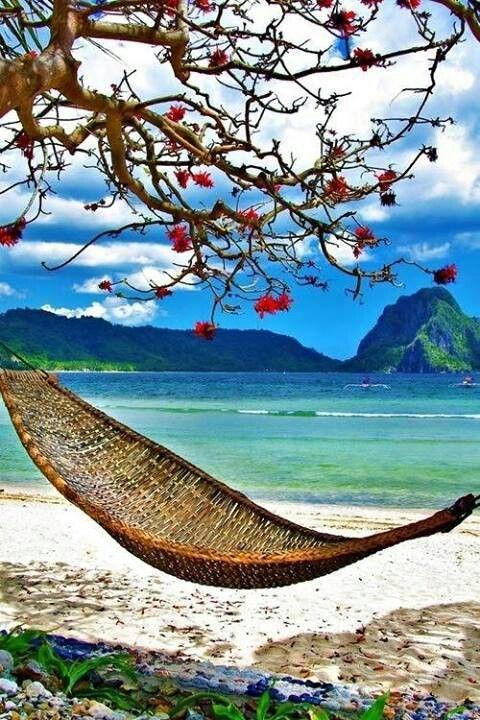 White sand. Hammock.  Clear blue water.  Perfection.  Fiji