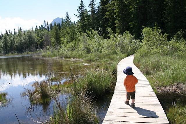 Camping in Bow Valley Provincial Park, Alberta, Canada