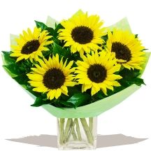 Mellow Yellow Sunflowers #flowers