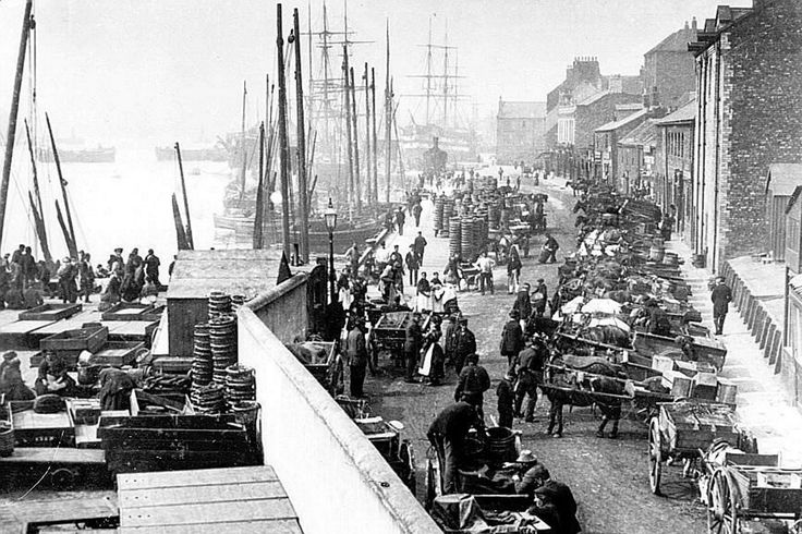 North Shields fish quay in 1910. Sail still outnumbers steam and the horse and cart reign supreme as the latest catch is awaited