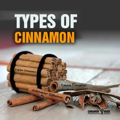 Types Of Cinnamon | True Ceylon Cinnamon | Chinese Cassia | Saigon or Vietnamese Cassia | Indonesian Korintje or Padang Cassia (includes Latin names) | Cinnamon Vogue