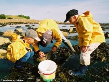 pêche à pied dans les cailloux: les remettre en place