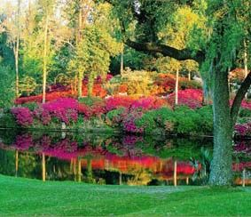 Middleton Place & Gardens, South Carolina