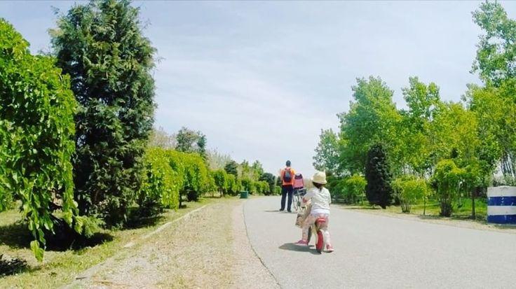 "21 Likes, 1 Comments - Sezgin Efe (@sezginsta) on Instagram: ""yıllar geçermiş geçsin ruhumuz genç ya... #bisiklet #dengebisikleti #cycling #balancebike…"""