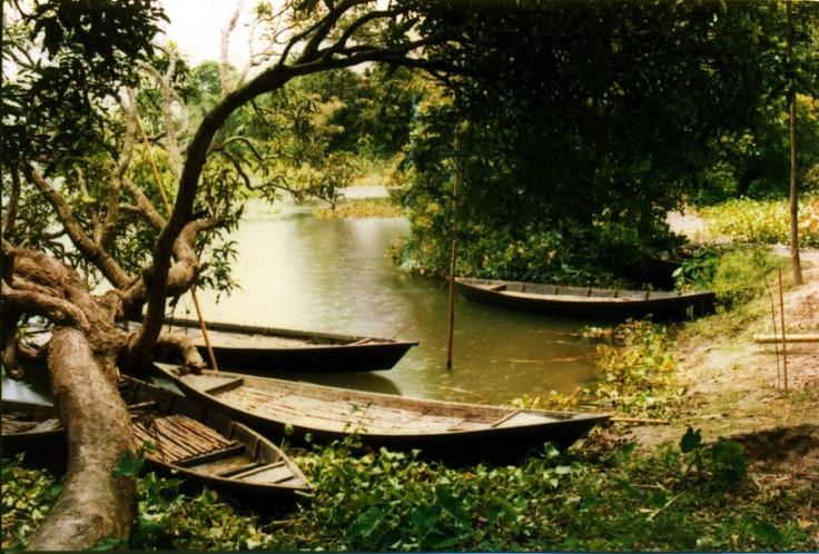Wooden Boat, Rural Bangladesh