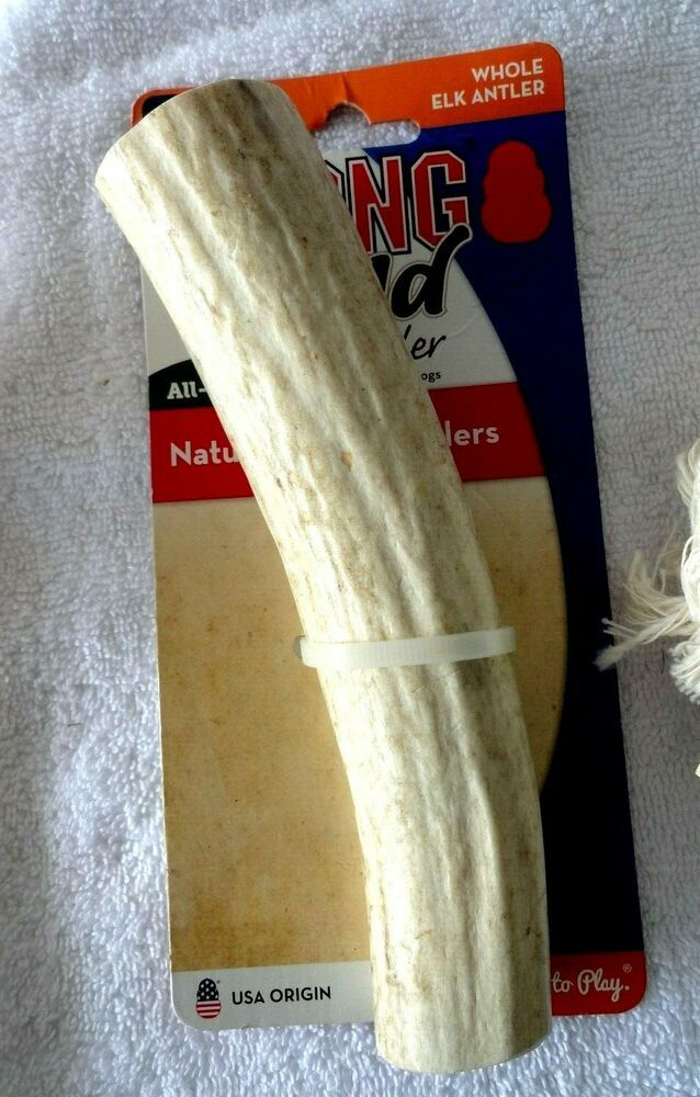 Kong Wild Whole Elk Antler Dog Toy Large 60lbs Up Free Shipping Elk Antlers For Dogs Elk Antlers Dog Treat Toys