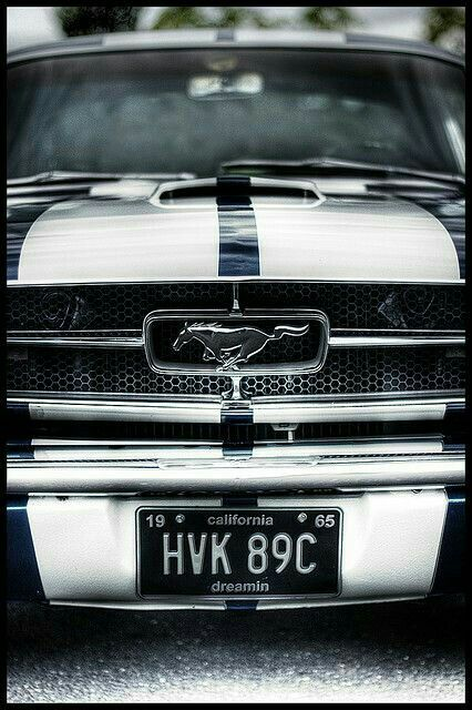 Mustang----Just for me on Valentine Day? ***** http://amzn.to/2rRdYLu